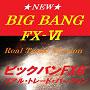 BIG BANG FX-�Yブログ内記事へ